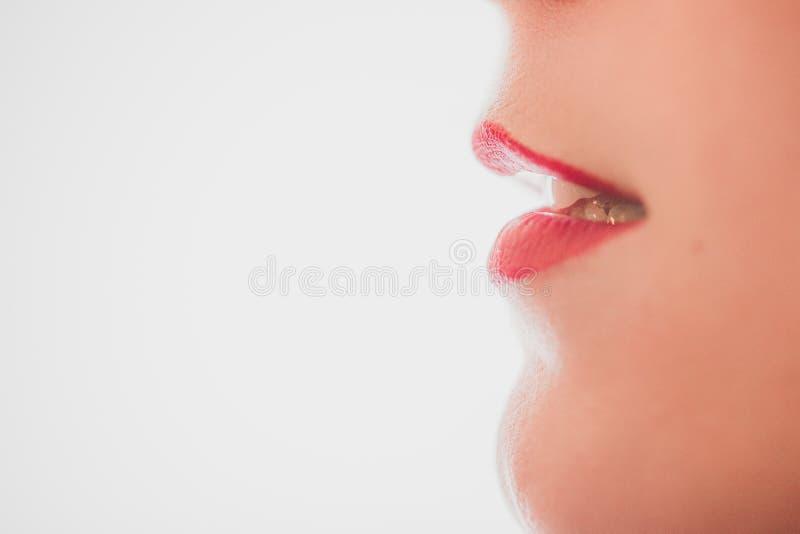 Closeup av attraktiva kanter av en kvinnlig med läppstift på en vit bakgrund med utrymme för text royaltyfri bild