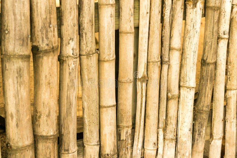 Closeup av bambumateriel som gör ett staket arkivfoto