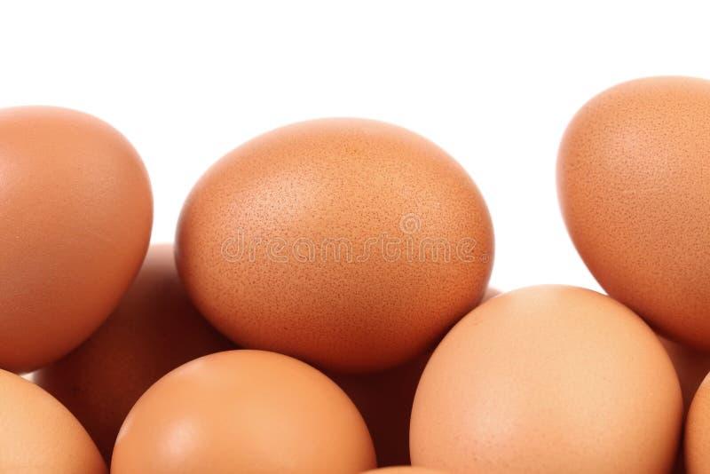 Closeup av bruna ägg. royaltyfria bilder