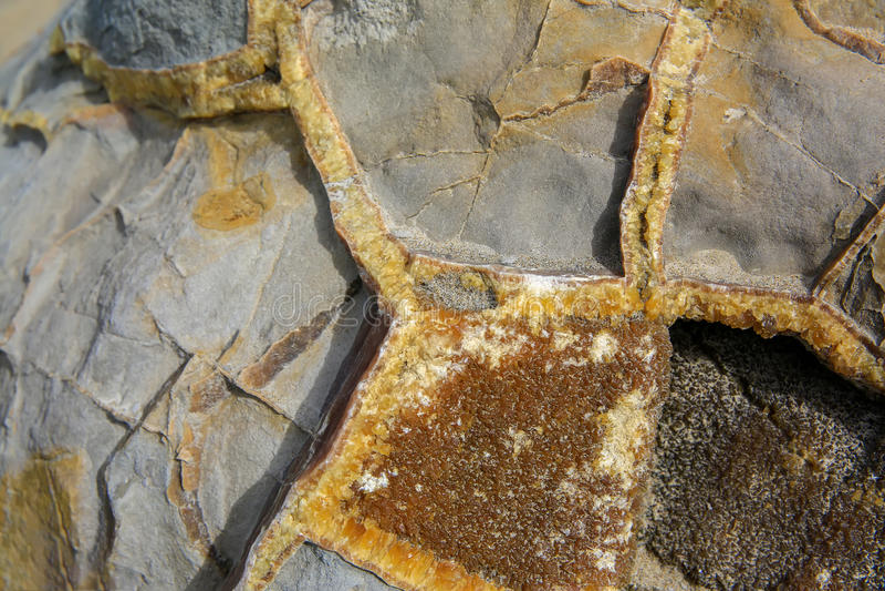 Closeup av den brutna Moeraki stenblocket, Nya Zeeland royaltyfri bild