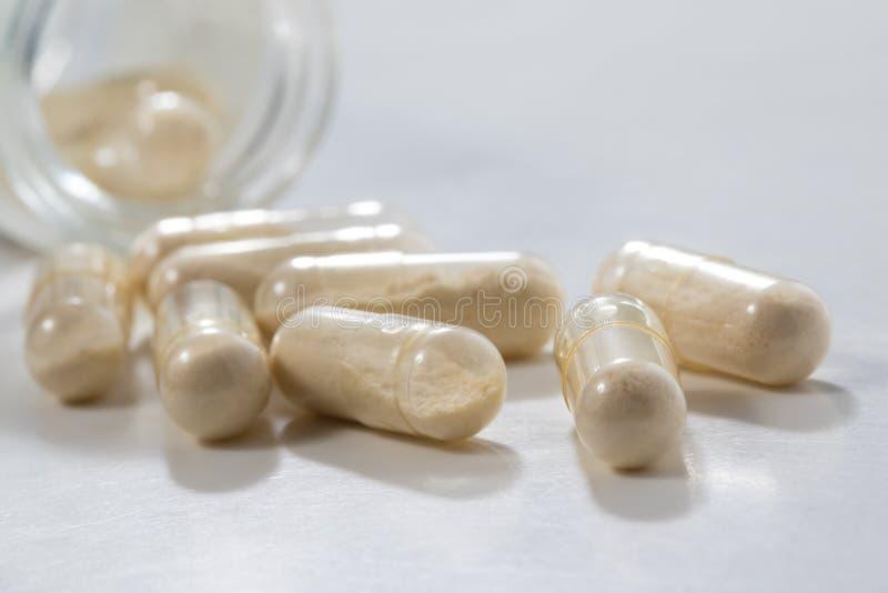 Closeup av den genomskinliga Probiotics kapseln i glasflaska arkivfoton