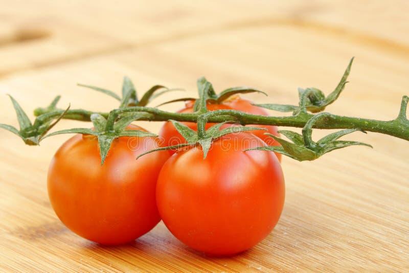 Closeup av den körsbärsröda tomaten arkivbilder