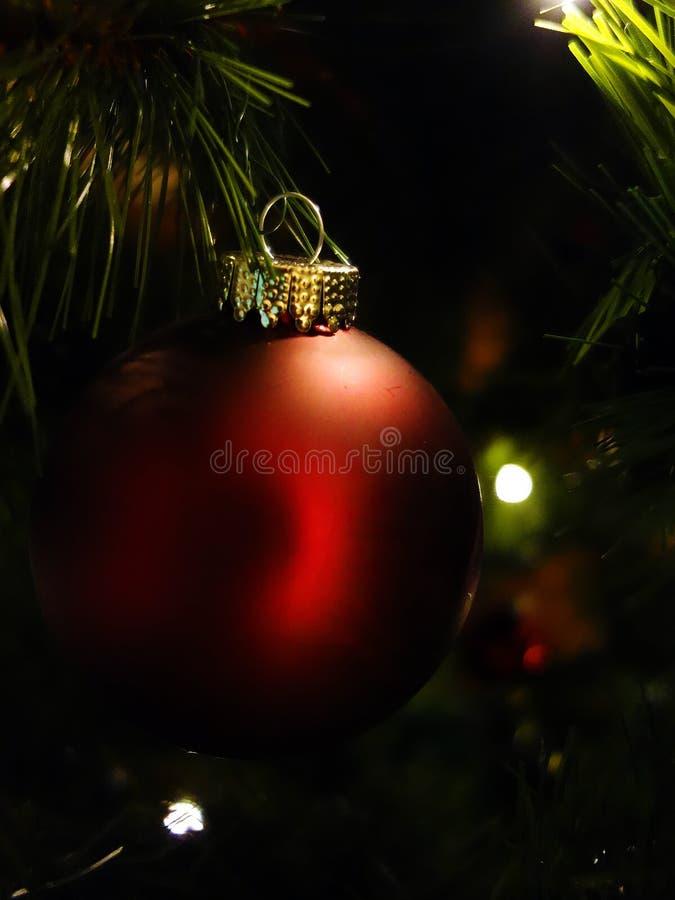 Closeup av den röda bollen för julträd arkivfoto