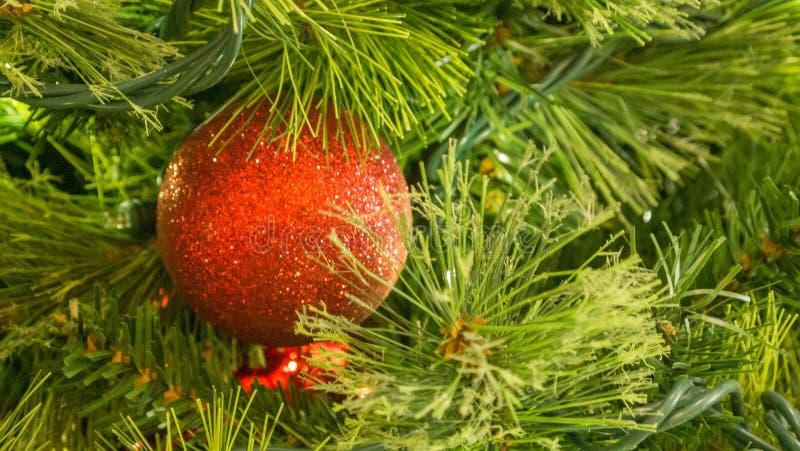 Closeup av den röda julprydnaden på träd arkivbilder