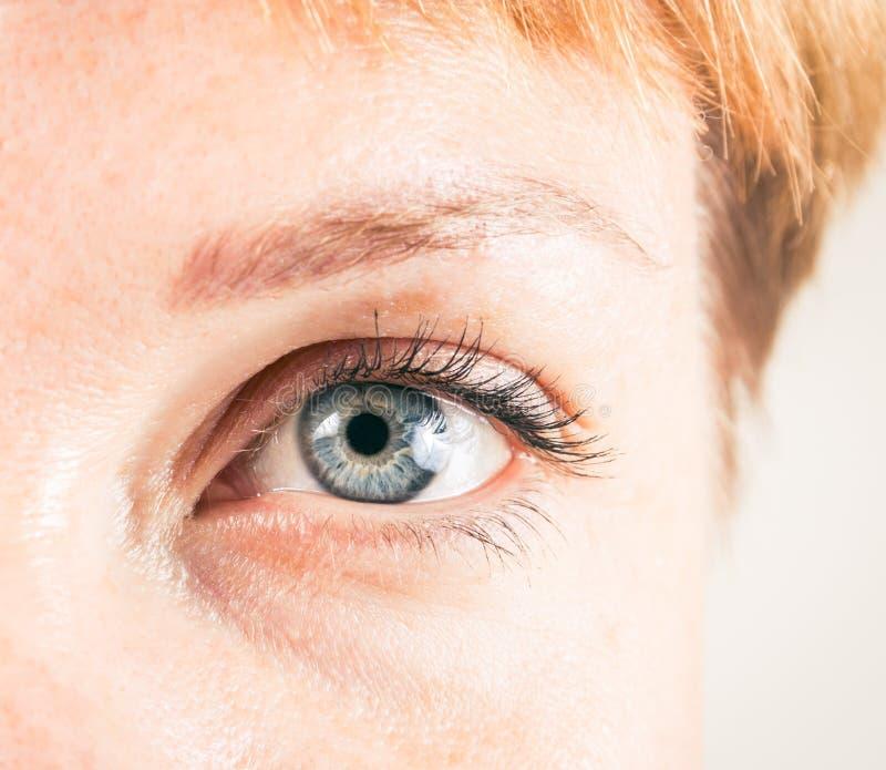 Closeup av det kvinnliga ögat arkivfoton