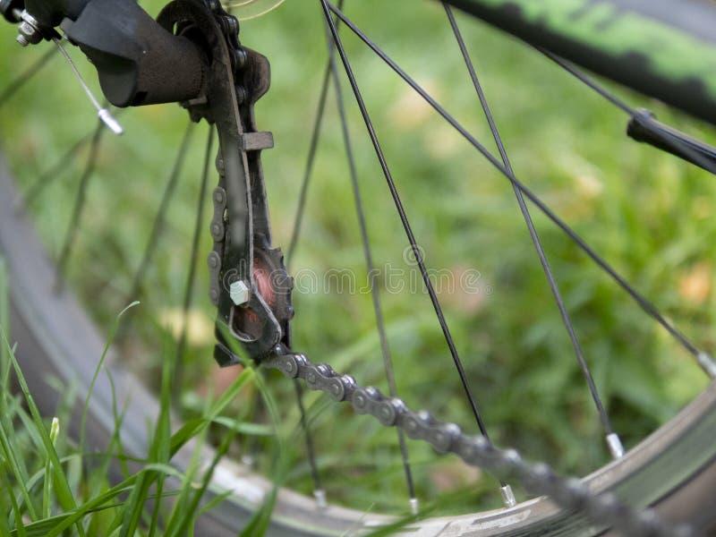 Closeup av en cykelkugghjulmekanism och kedja på det bakre hjulet av mountainbiket Kassett för bakre hjul från ett berg royaltyfri bild
