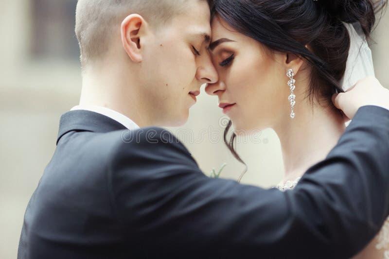 Closeup av en härlig sinnligt krama för nygift personpar och touc royaltyfri bild