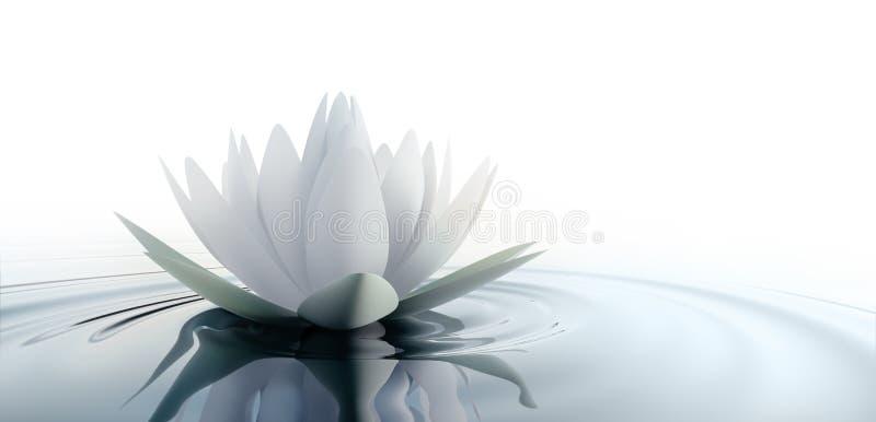 Closeup av en lotusblommablomma i ett lugna hav vektor illustrationer