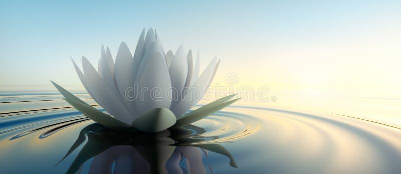Closeup av en lotusblommablomma i ett lugna hav på solnedgången stock illustrationer