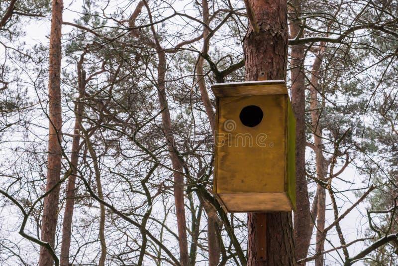 Closeup av ett enkelt träfågelhus som hänger på en trädstam, kallt vinterväder med insnöat skogen royaltyfria foton