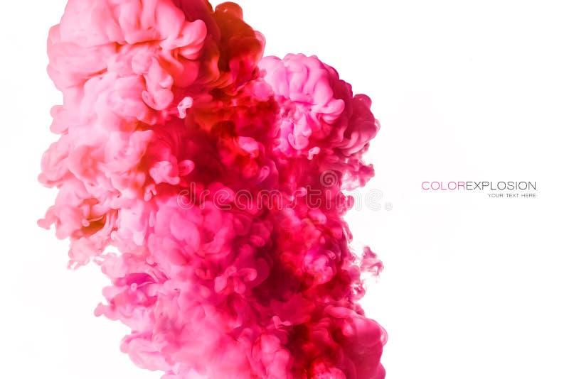 Closeup av ett färgrikt rosa akrylfärgpulver i vatten som isoleras på vit med kopieringsutrymme abstrakt bakgrund illustrationen  arkivfoton