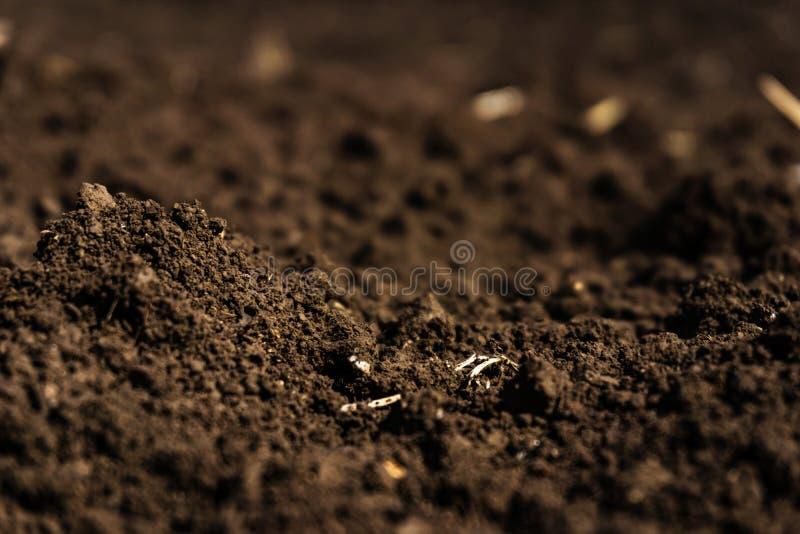 Closeup av ett fertilt plogat fält, svart jord royaltyfria bilder