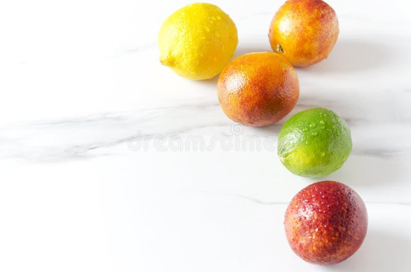 Closeup av exotiska frukter på vit yttersida, tomt utrymme Den nya tvättade blodapelsiner, limefrukt och citronen med vatten tapp arkivbilder