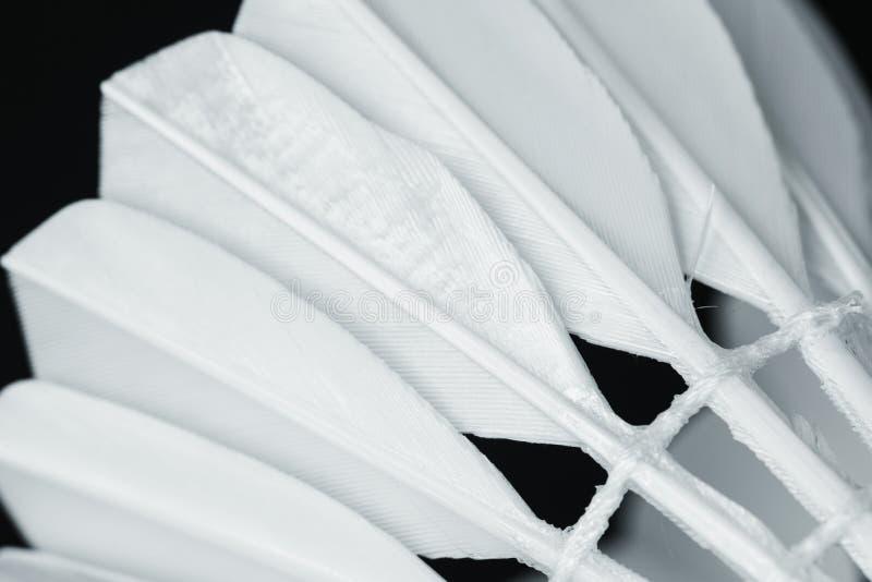 Closeup av fjäderbollbadmintonsporten arkivfoto
