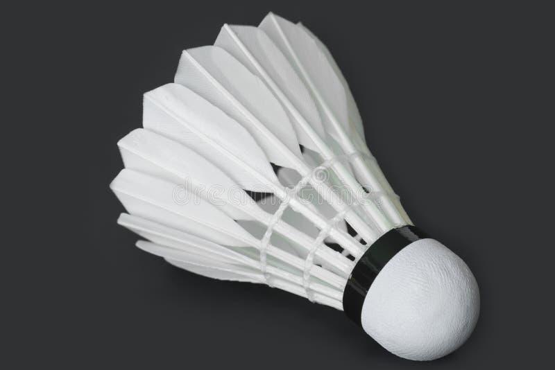 Closeup av fjäderbollmakroskottet arkivfoto