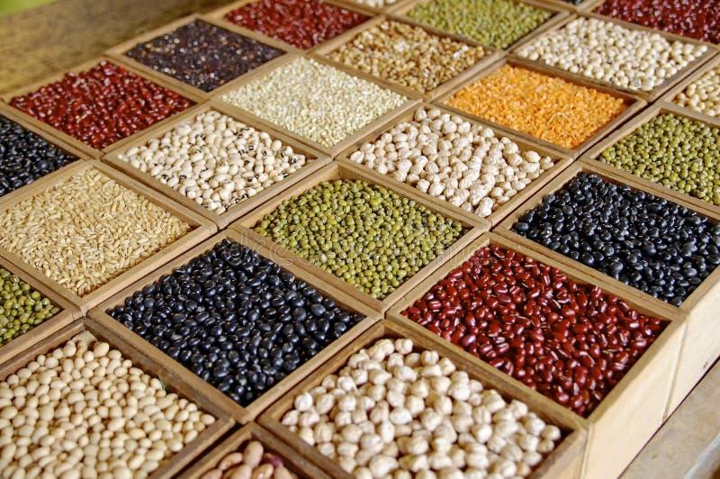 Closeup av frö och korn royaltyfri bild