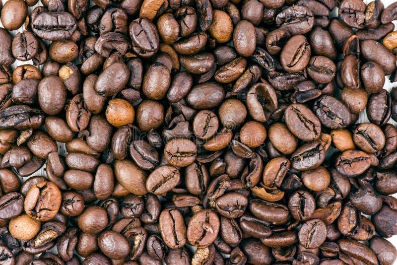 Closeup av italienare grillade bönor för ett kaffe royaltyfri fotografi