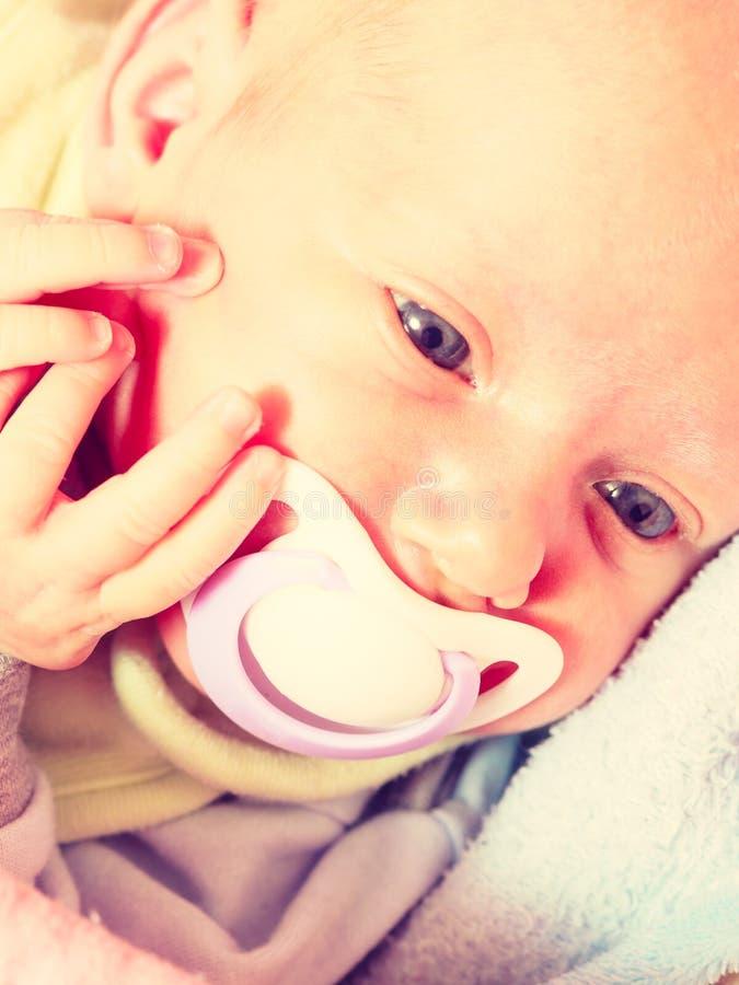 Closeup av litet nyfött ligga med spenen i mun arkivbilder