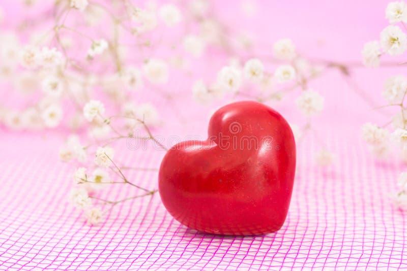 Closeup av röd hjärta och vita blommor royaltyfri bild