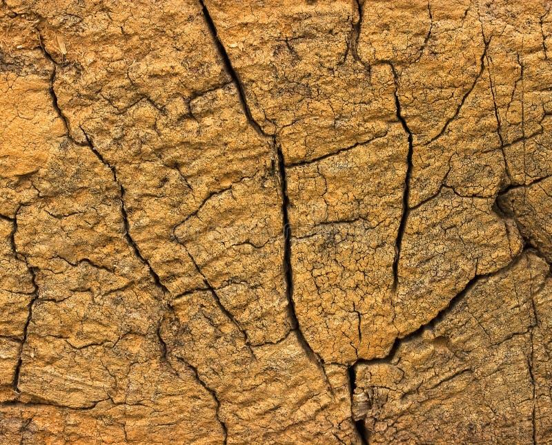 Closeup av varm plan wood textur med sprickor arkivfoto