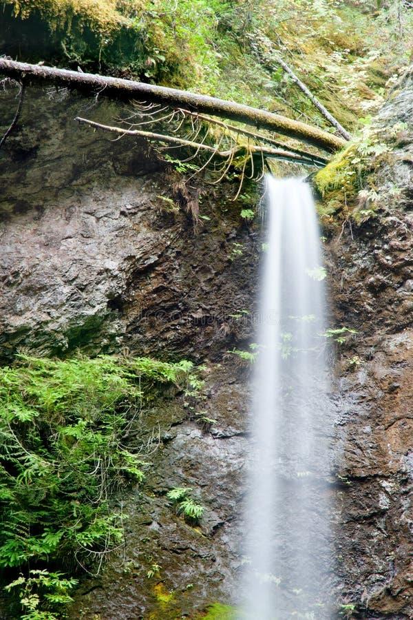 Closeup av vattenfallet royaltyfri foto