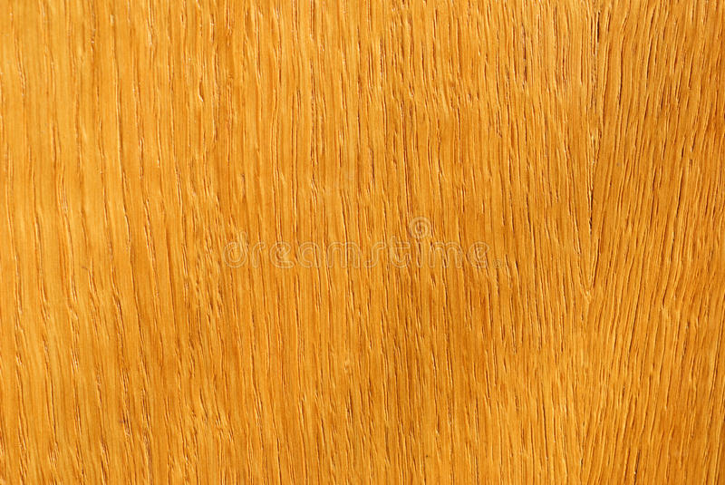 Closeup background of wood texture royalty free stock images