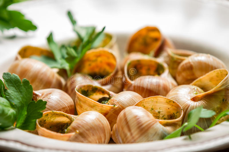 Closeup of baked snails with garlic butter and parsley stock photo