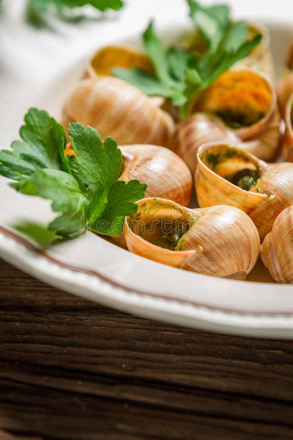 Closeup of baked snails with parsleyand garlic butter stock images