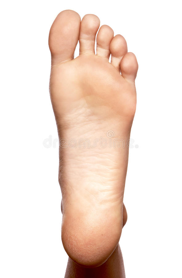 Download Closeup, bare foot, sole stock photo. Image of anatomy - 10986444