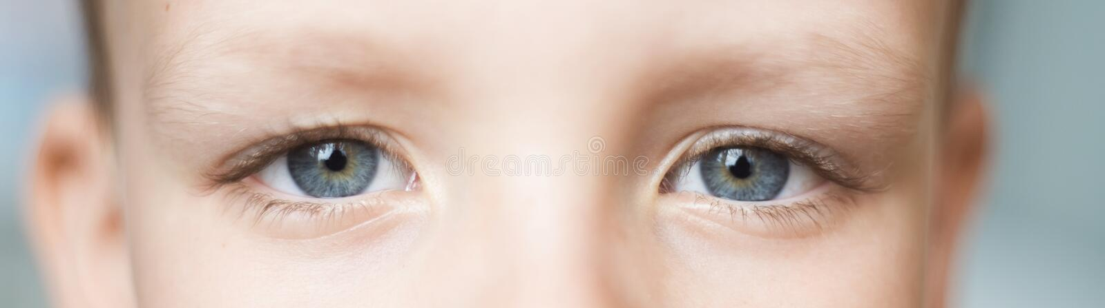 Closeup of beautiful boy eye. Beautiful grey eyes macro shot. image of a little kid eye stock photo