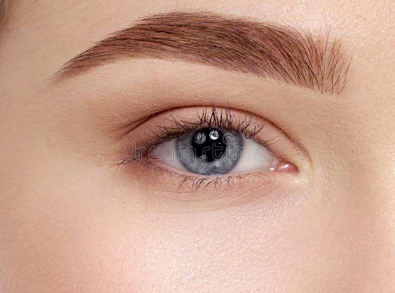 Closeup of beautiful female blue eyes with long eyelashes stock images