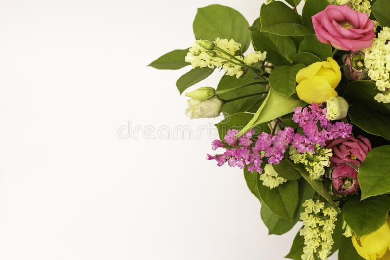 Closeup beautiful flowers in pastel colors on a blue background. Greeting card, Mom`s day, wedding invitation, birthday .Copy royalty free stock image