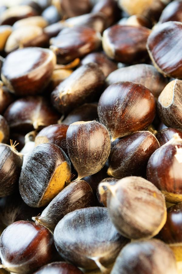 Closeup of beautiful ripe raw chestnuts stock images