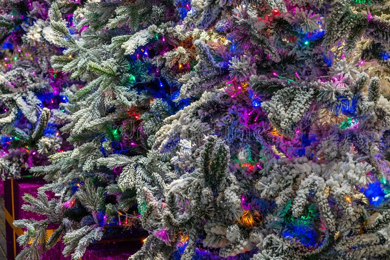 Closeup of beautifully decorated colorful Christmas trees. Texture and background royalty free stock image