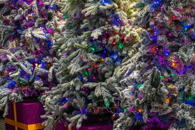 Closeup of beautifully decorated colorful Christmas trees. Texture and background royalty free stock photo