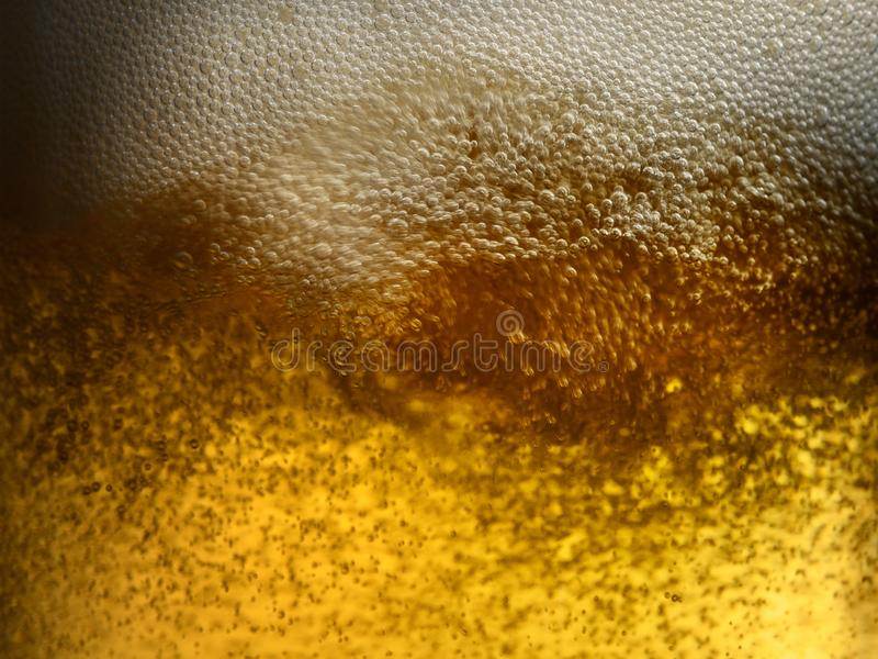 Closeup beer pics virgin pussy nude