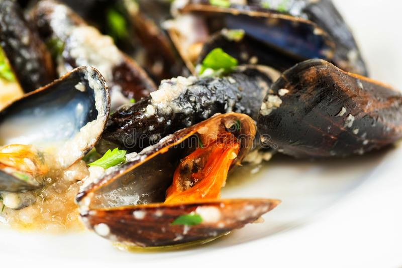 Closeup boiled black mussels stock photo