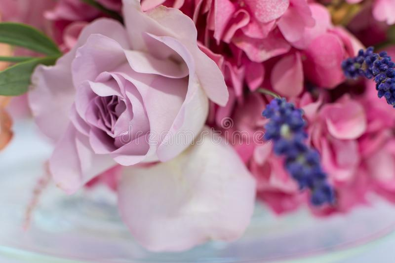 Close up bouquet of fresh roses, lavander and hydrangea. Event de stock photography