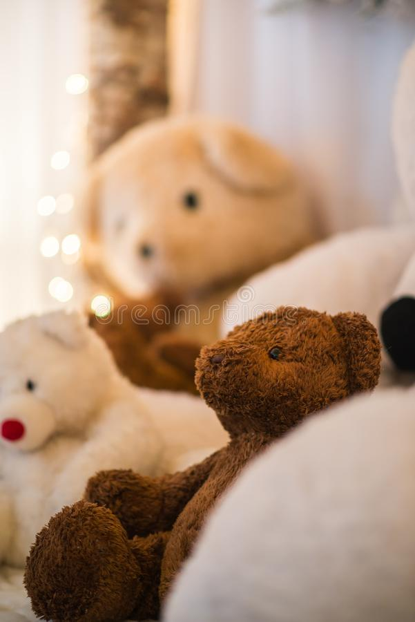 Closeup brown teddy bears lays inside white stuffted bears indoor under warmth lights. Cozy holidays royalty free stock images
