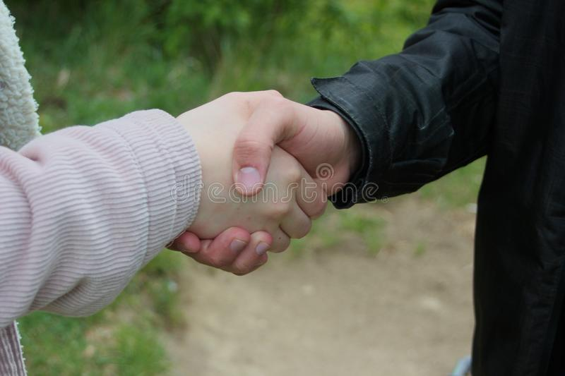 Closeup of a business handshake, in the forest royalty free stock photos