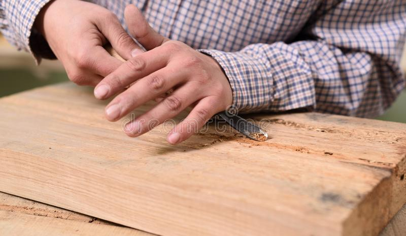 Closeup of carpenter hands working on wooden board with chisel. Closeup stock photography