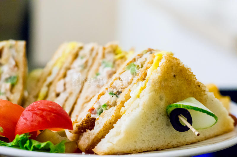 Closeup of cheese vegetable sandwich healthy eating royalty free stock images