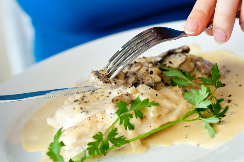 Download Closeup Of Chicken Polo Creme Stock Image - Image of german, closeup: 15680643