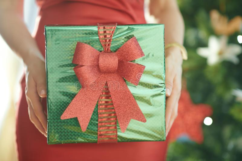 Closeup on Christmas box in hands of woman near Christmas tree royalty free stock images