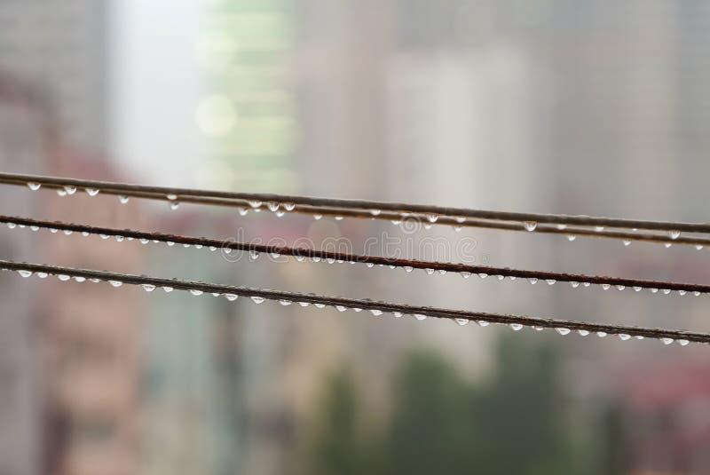Rain Drops on rope royalty free stock photo