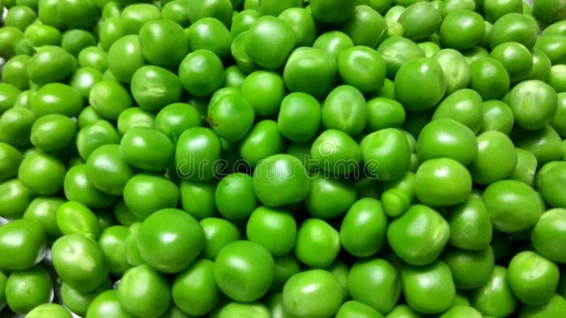 Peas. A closeup click of green peas seeds stock image