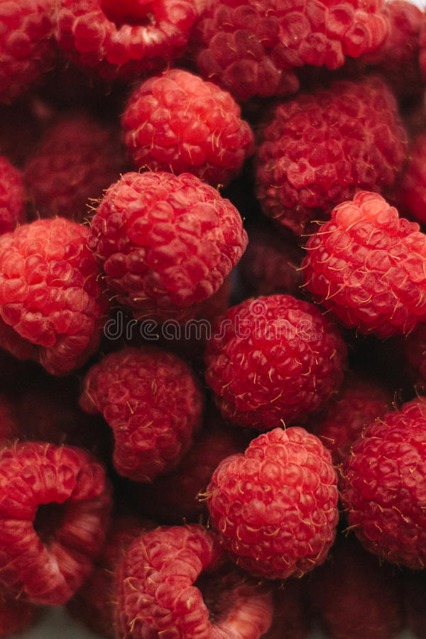 Closeup colorful raspberries pattern stock photography