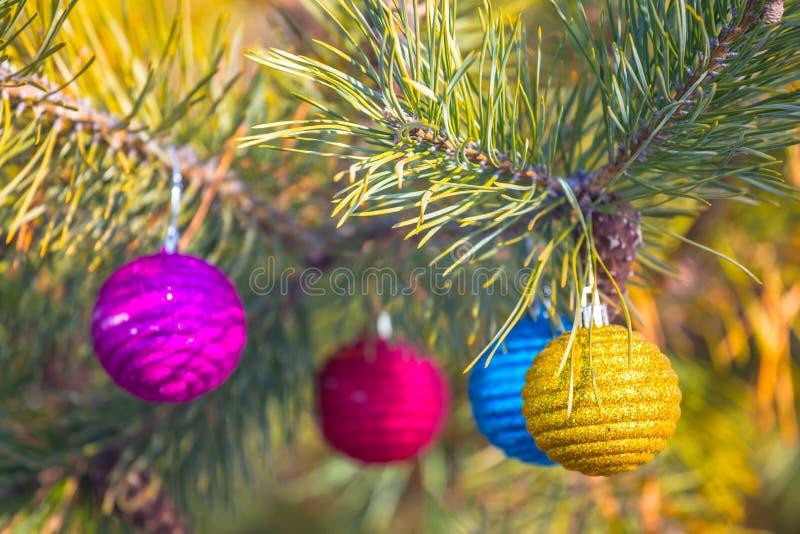 Closeup Cristmass jouets sur une branche de pin photo libre de droits