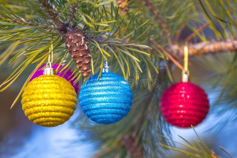 Closeup Cristmass jouets sur une branche de pin photo stock