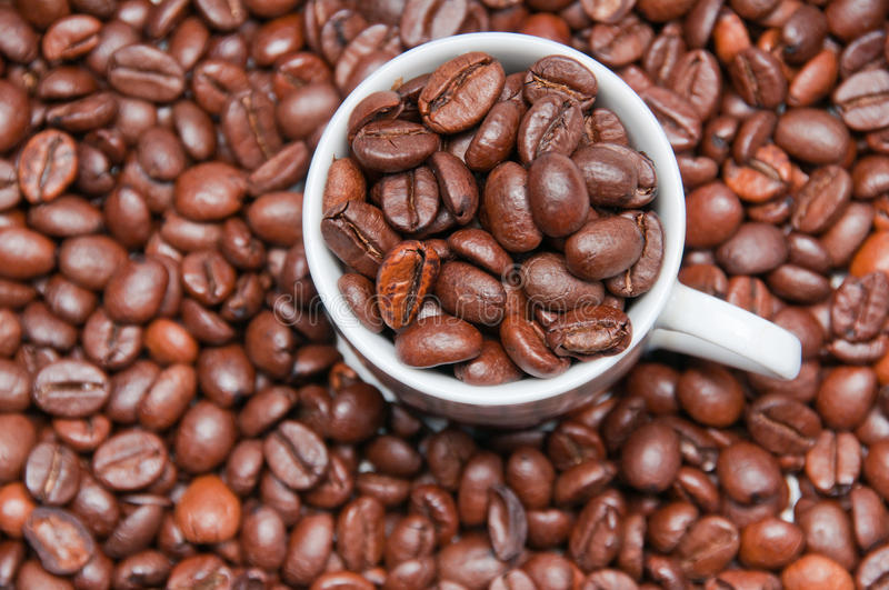 Closeup of cup filled with coffeee beans. Closeup overhead shot of a cup filled with roasted coffeee beans surrounded by more roasted beans stock photos